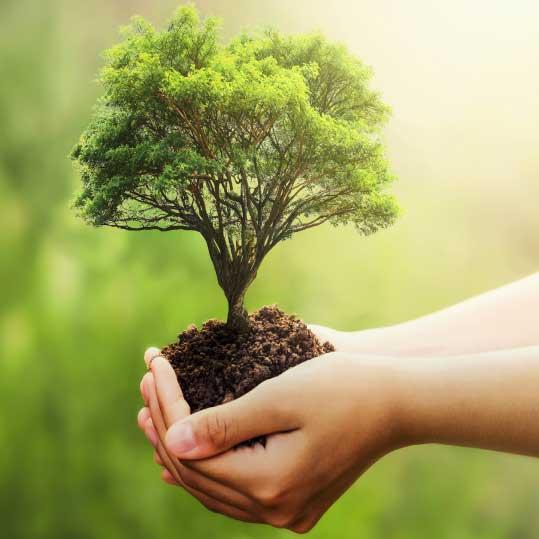 emppresa de impacto ambiental